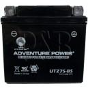 Polaris 0451043 ATV Quad Replacement Battery Dry AGM Upgrade