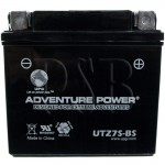 Yamaha 2009 WR 250 F, WR250FY Motorcycle Battery Dry