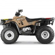 Polaris Xpedition Atv All Terrain Vehicle Batteries Free